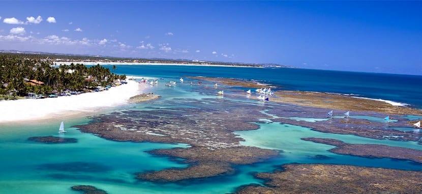 playa-de-brasil